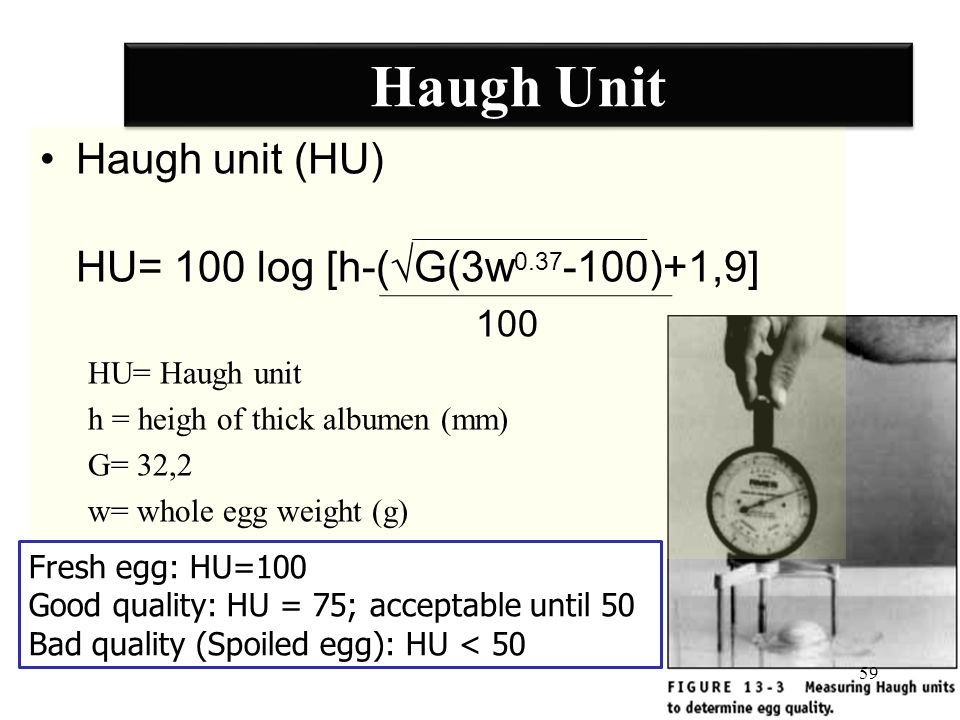 Haugh Unit Haugh unit (HU) HU= 100 log [h-(√G(3w0.37-100)+1,9] 100